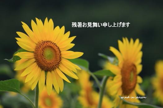 Img_096701